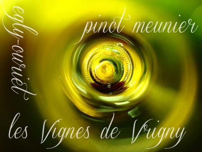 splash Egly-Ouriet les vignes de vrigny
